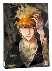 Calendrier Bleach 2013 by Kaze