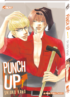 Affiche de Punch Up
